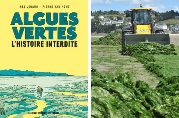 Les algues vertes échouées sur la plage sont dangereuses pour l'homme