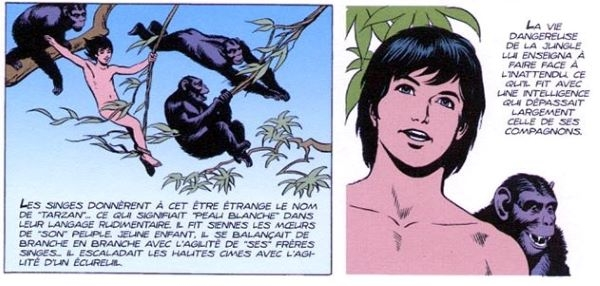 Parmi les héros de bande dessinée, Tarzan est celui qui a été le plus représenté...