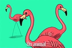 Janine en 5 dessins : l'animal