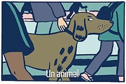 Elizabeth Holleville en 5 dessins : l'animal