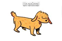 Anaïs de Sousa en 5 dessins : l'animal