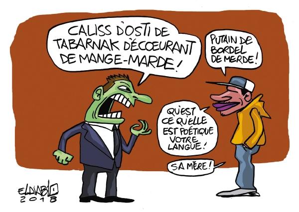 Carte postale sur la langue québécoise