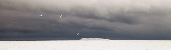 La photo d'un iceberg de François Lepage présente dans le livre