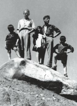 Morris, Franquin et trois des enfants de Jijé en Californie - 1948 (L'art de Morris)